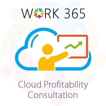 Picture of Cloud Profitability Consultation